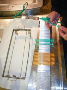 Semen straws for cryopreservation trials